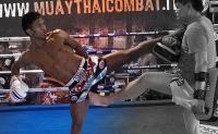 buakaw-yokkao-thai-boxing-shorts
