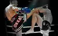 muay-thai-boxing-shorts-cedric-muller