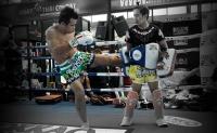 muay-thai-boxing-shorts-ekapop-png