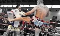 muay-thai-boxing-shorts-yokkao