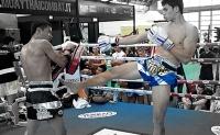 pinto-yokkao-muay-thai-boxing-shorts
