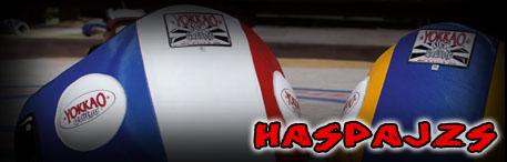 Haspajzs