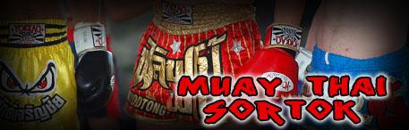 Muay Thai Shortok